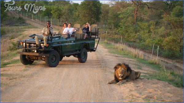 kruger national park 9 Kruger National Park