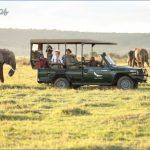 masai mara 0 150x150 Masai Mara