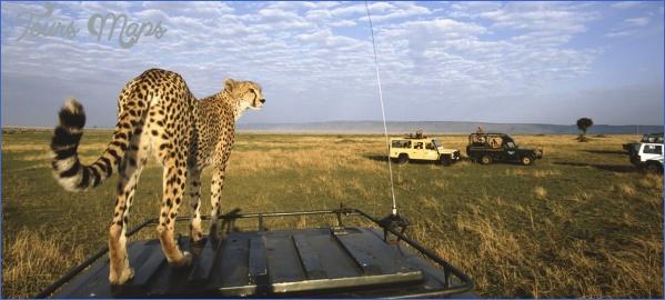masai mara 12 Masai Mara
