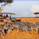 masai mara 5 150x150 Masai Mara