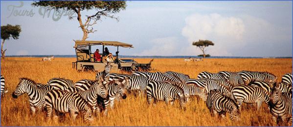 masai mara 5 Masai Mara