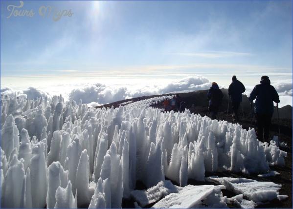 Mount Kilimanjaro_12.jpg