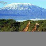 Mount Kilimanjaro_6.jpg