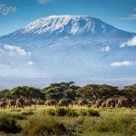 Mount Kilimanjaro_8.jpg