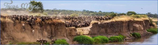 the serengeti 3 The Serengeti