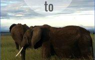 Tips for Travelling Africa_0.jpg