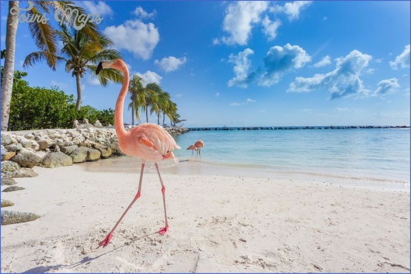 best-places-to-travel-in-march-01-aruba-shutterstock_570470086.jpg?itok=GVDeNxFK