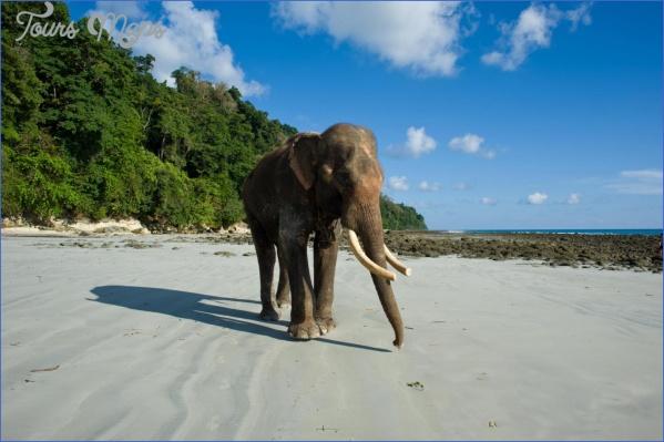 andaman islands 1 10 Best Travel Destinations 2018