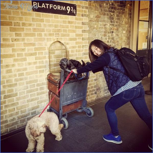 Best Travel Destinations With A Dog_0.jpg