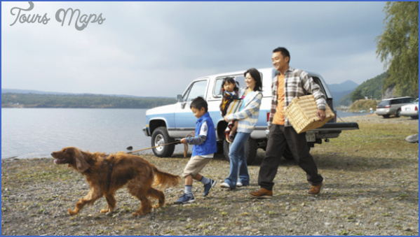 dog travel feature w603 Best Travel Destinations With A Dog