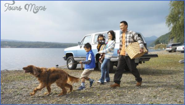 dog_travel_feature.jpg?w=603