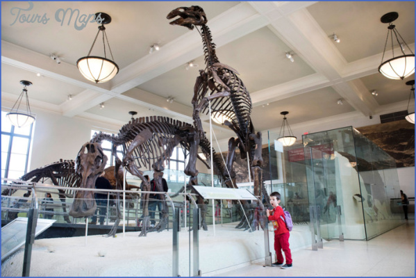 kids museum natural history w710 h473 BEST MUSEUMS IN NEW YORK