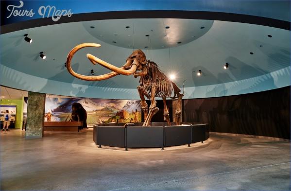 mammoth1 BEST MUSEUMS IN LA