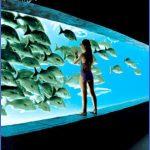 p atlantisaquarium 150x150 Best Travel Destinations With Toddlers