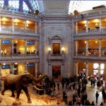 an insiders guide to the best museums in ny 6 150x150 An Insiders Guide to the Best Museums in NY