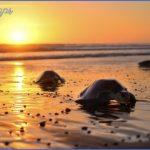 best costa rica beaches to visit 150x150 6 Beaches You Should Visit In Costa Rica