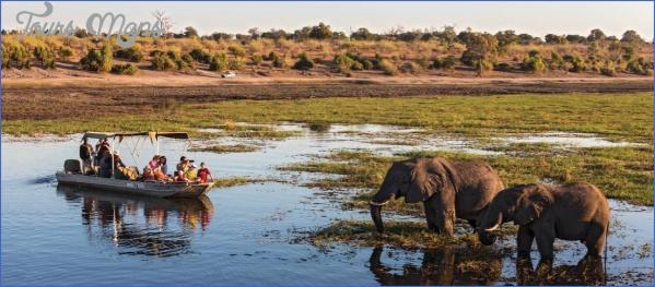chobe river botswana africa 329624 1100px 16x7 Experience World Class Level Safari in India