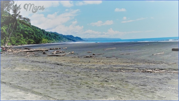 corcovado national park amigos area conservacic3b3n osa 6 6 Beaches You Should Visit In Costa Rica