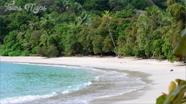 costa rica manuel antonio np rainforest beach 6 Beaches You Should Visit In Costa Rica