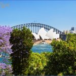 jacarandas in spring sydney harbour 150x150 SYDNEY HARBOUR BRIDGE MAP