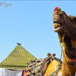 pushkar camel fair 2018 and pushkar lake aarti ceremony on ghats steps india  17 150x150 Pushkar Camel Fair 2018 and Pushkar Lake Aarti Ceremony on Ghats steps India