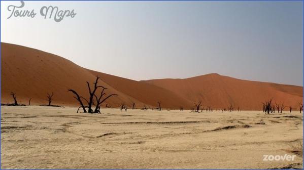 sossus oasis campsite sesriem namibia 10 Sossus Oasis Campsite Sesriem Namibia
