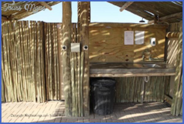 sossus oasis campsite sesriem namibia 12 Sossus Oasis Campsite Sesriem Namibia