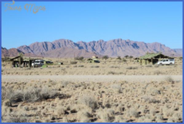 sossus oasis campsite sesriem namibia 18 Sossus Oasis Campsite Sesriem Namibia