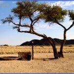 sossus oasis campsite sesriem namibia 8 1 150x150 Sossus Oasis Campsite Sesriem Namibia