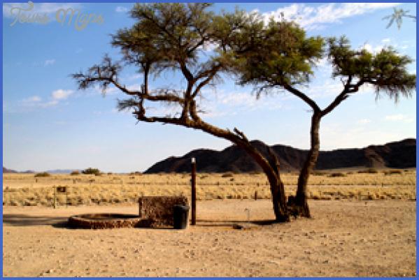 sossus oasis campsite sesriem namibia 8 1 Sossus Oasis Campsite Sesriem Namibia