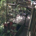 a cobra under my table kruger park south africa 09 13 150x150 Kruger Park South Africa