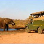 africa safari elephant safari car 150x150 Africa Safaris, and travel   Botswana Zimbabwe Zambia