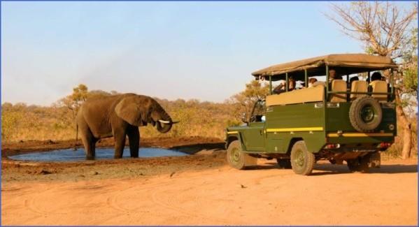 africa safari elephant safari car Africa Safaris, and travel   Botswana Zimbabwe Zambia