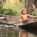amazon river cruise 2016 hd 05 150x150 Amazon River Cruise