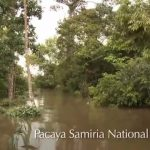 amazon river cruise 2016 hd 11 150x150 Amazon River Cruise