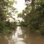 amazon river cruise 2016 hd 12 150x150 Amazon River Cruise