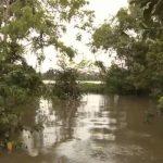 amazon river cruise 2016 hd 13 150x150 Amazon River Cruise