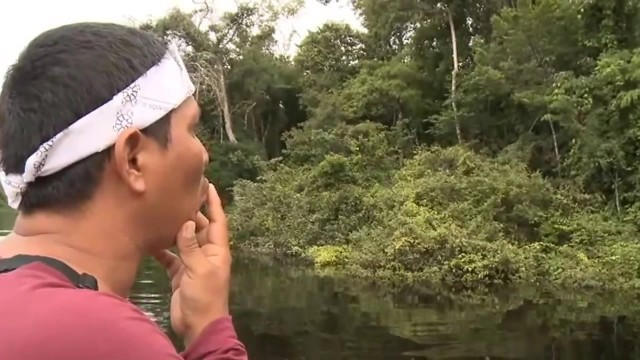 amazon river cruise 2016 hd 19 Amazon River Cruise