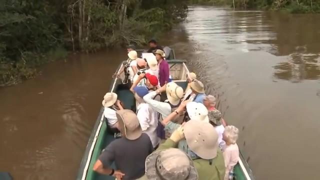 amazon river cruise 2016 hd 26 Amazon River Cruise
