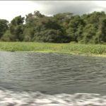 amazon river tourism vacations hd1080p 03 150x150 Amazon River tourism vacations
