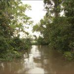 amazon river tourism vacations hd1080p 17 150x150 Amazon River tourism vacations