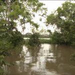 amazon river tourism vacations hd1080p 18 150x150 Amazon River tourism vacations