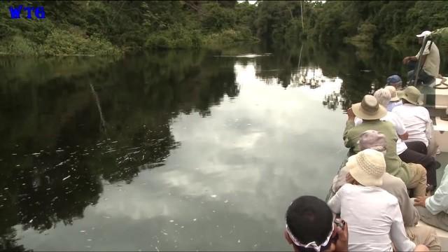 amazon river tourism vacations hd1080p 28 Amazon River tourism vacations