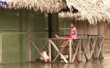 amazon river tourism vacations hd1080p 62