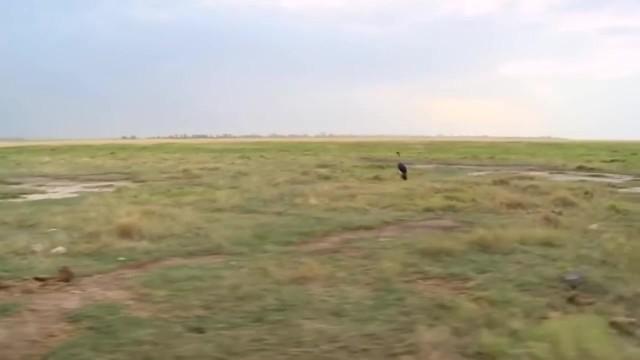 amboseli national park kenya 3 Amboseli National Park Kenya