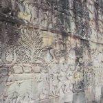 angkor what siem reap, cambodia 15