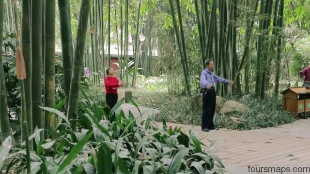 baby panda selfies chengdu 72 hour challenge chengduchina 17 Baby Panda Selfies Chengdu 72 Hour Challenge Chengdu China