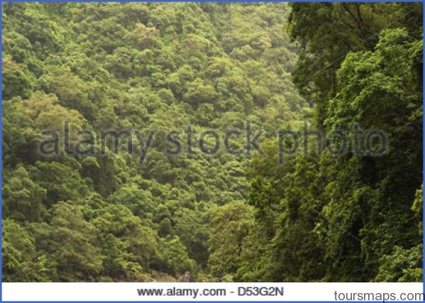 barron gorge rainforest cairns queensland australia d53g2n JUNGLE QUEEN Cairns Australia