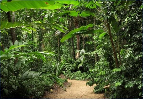 c fakepath tour cairns all encompassed lead JUNGLE QUEEN Cairns Australia