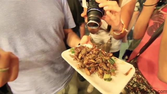 chomping on crickets chiang rai thailand 28 Chiang Rai Thailand